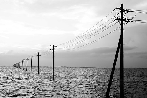High Contrast Monochrome utility poles into the sea 11