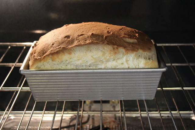 Gluten Free Bread Risen & Browning
