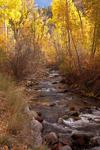 fall colorado stream sylvanlakestatepark
