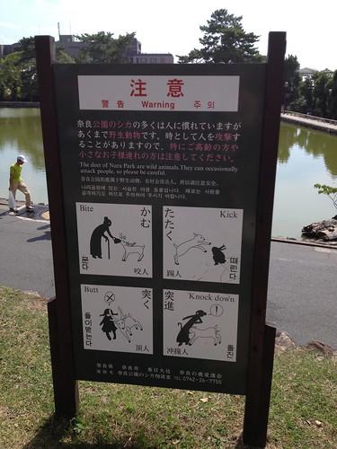 Nara Deer Park IMG_3289