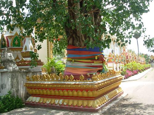 Savannakhet-Wat Sayaphoum (25)