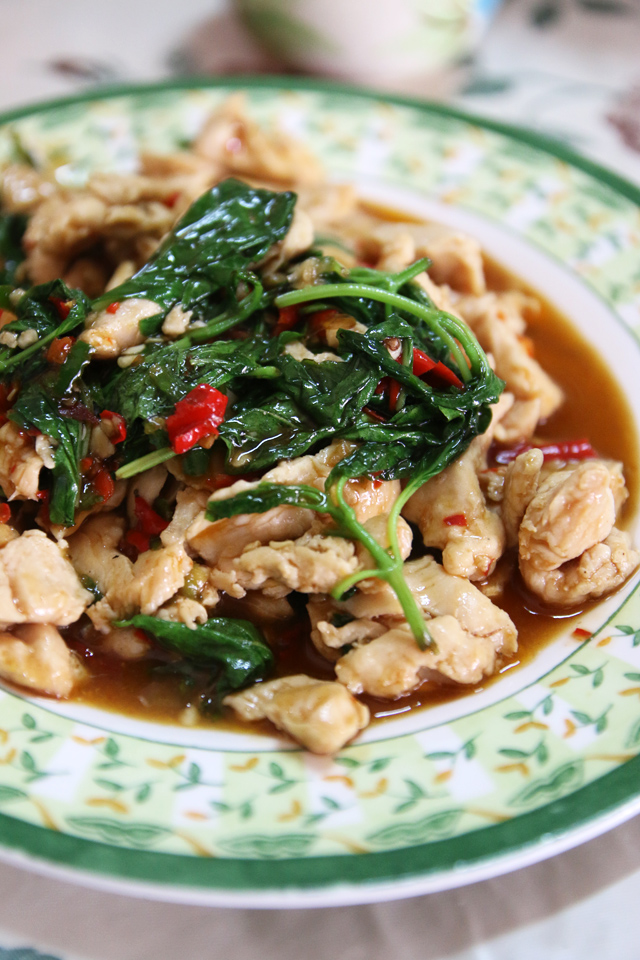 pad kra pao gai (ผัดกระเพราไก่)