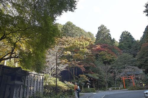 【写真】2013 紅葉 : 日向大神宮/2020-10-05/IMGP3367