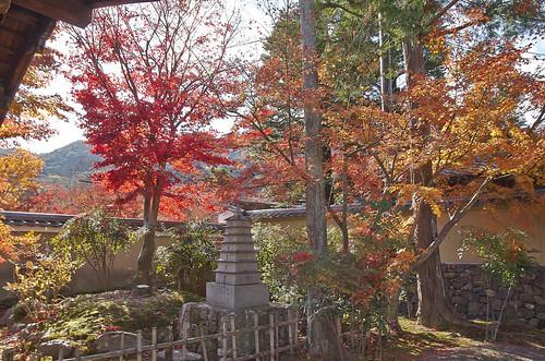 【写真】紅葉 : 弘源寺