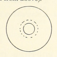 Image taken from page 31 of 'Object Lessons in Geography for Standards I. II. & III'