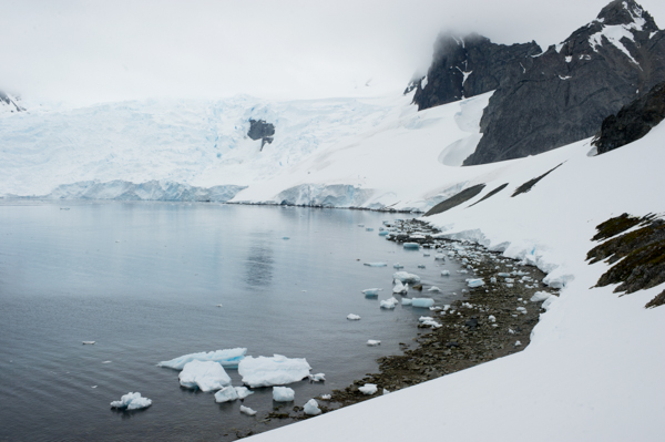 RYALE_Proposal_Antarctica-1