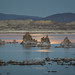 Mono Lake Moonshine