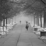 Morning Fog on Campus