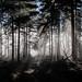 _DSC8653 by Luke Plonka