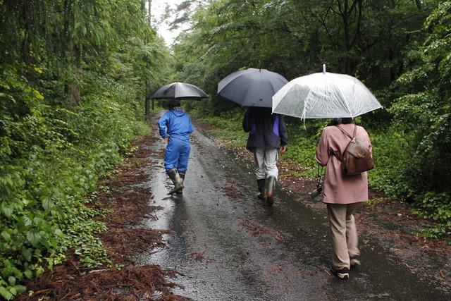 雨の中,ゆっくり歩き始めた.