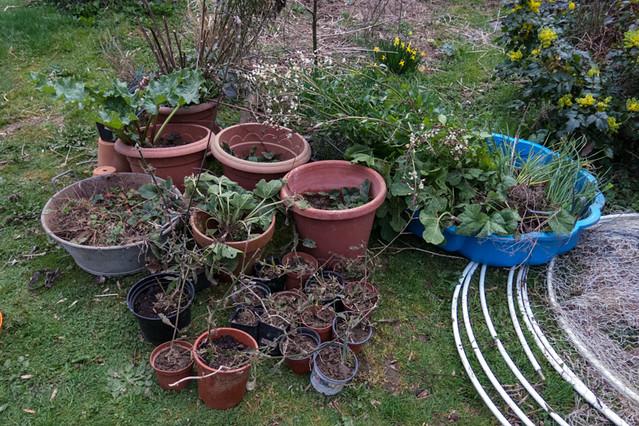 Preparing the soil for the vegetable garden flickr for Preparing soil for vegetable garden