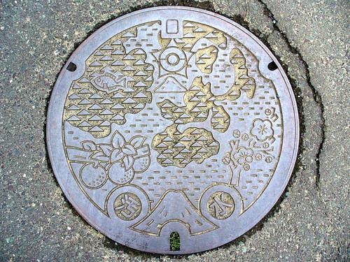 Mikata Fukui, manhole cover (福井県三方町のマンホール)