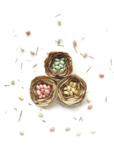 Brown-Paper-Bird-Nest-Favors