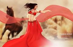TURKISH DANCING DRESS MESH