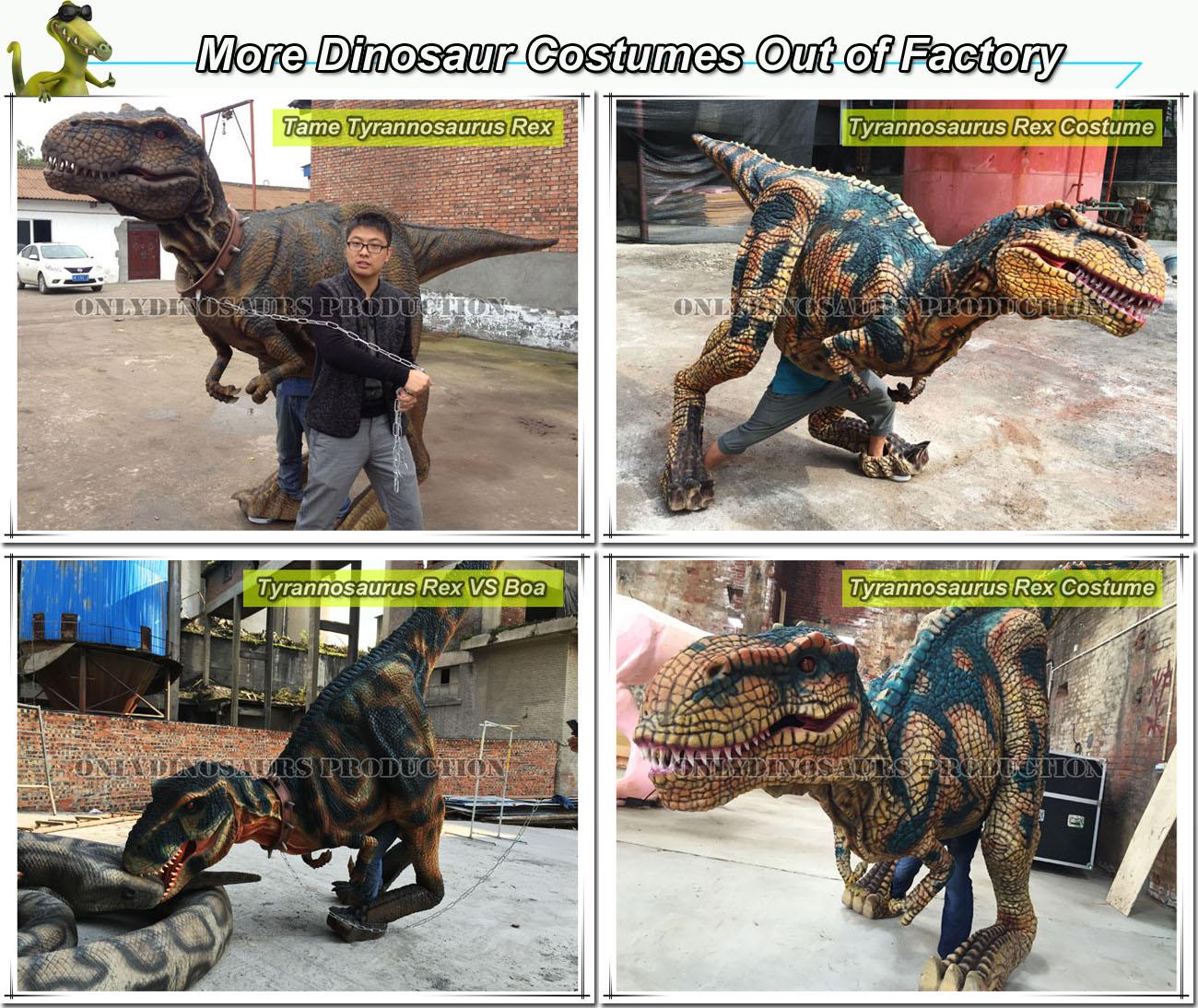 Dinosaur Costumes Show-01
