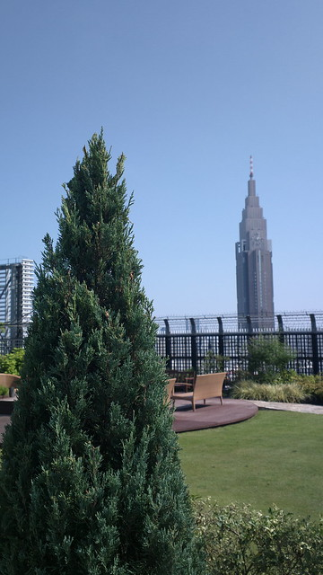 Tree and tower