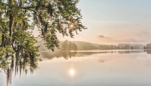 morning sun colors beauty fog river georgia landscape photography star shine augusta savannah savannahrapids nikond800 nikon28mmf18g drshanab