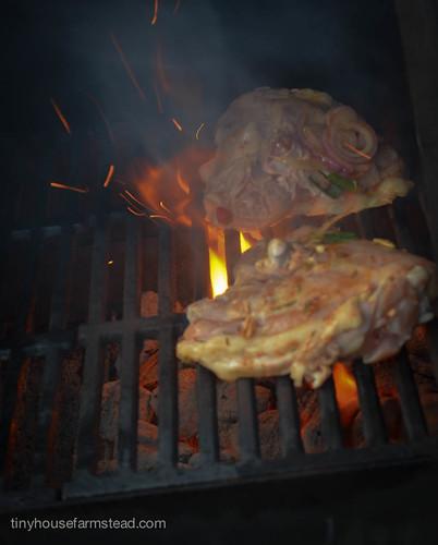 Chicken_Dinner_8_25_13-4
