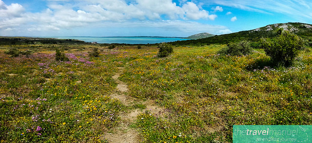West Coast National Park and Jacobsbaai 2013-22