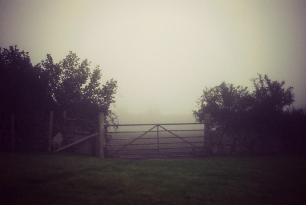 mist-15