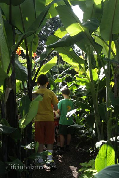 Student Gardens at Longwood Gardens