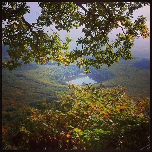 Ausblick auf Krufter Waldsee #traumpfad