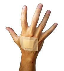 safety glove(0.0), human body(0.0), hand(1.0), arm(1.0), finger(1.0), limb(1.0), thumb(1.0), organ(1.0),