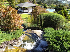 Cowra Japanese Gardens and tea rooms.