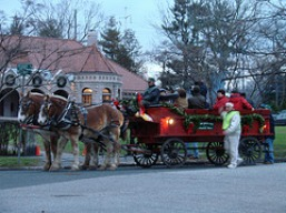 pequot_library_holiday_carriage_rides