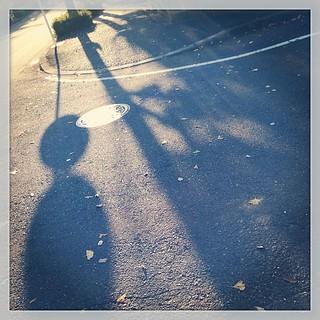 #street  #shadow