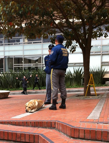 Security team at Universidad de Los Andes
