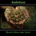 Small photo of Ambition