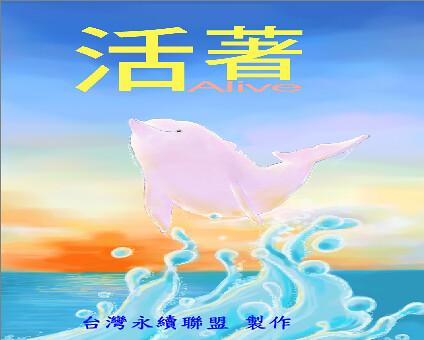白海豚繪本