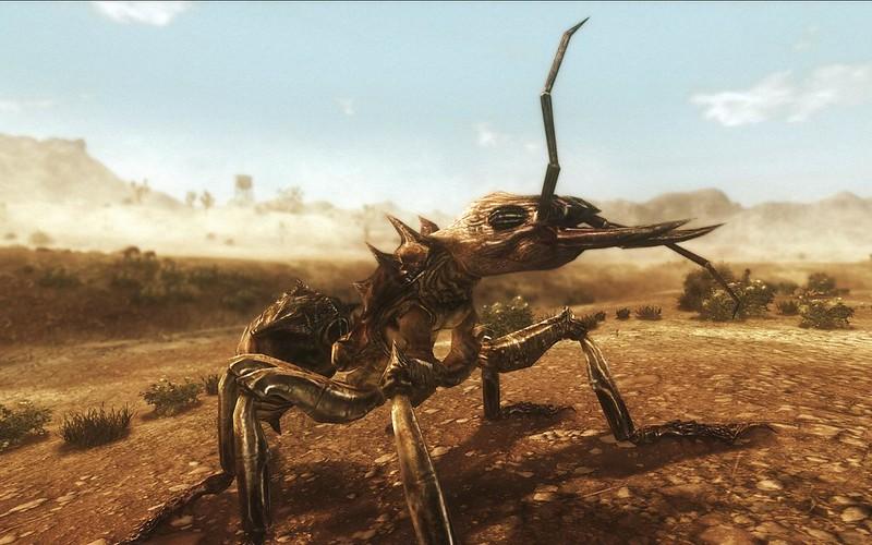 Fallout Screenshots XIV - Page 6 11428723436_b08263d1c3_c