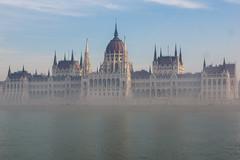 Across a Misty Danube