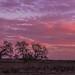 Sherbet SKies by Bob Bowman Photography