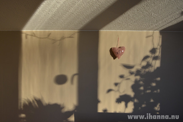 A Heart in the Window