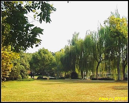 杭州 西湖 (其他景點) - 458 (西湖小瀛洲)