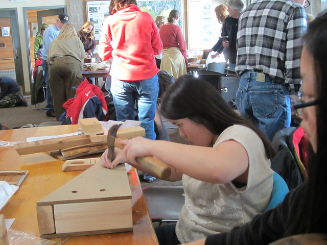 Building a bluebird house