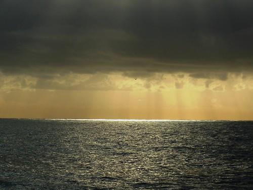 sea mtd mare sanremo febbraio