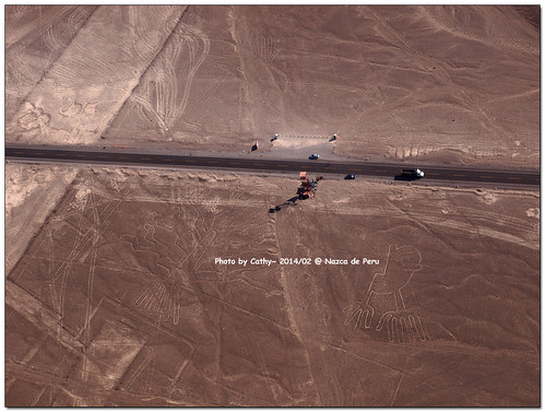 Nazca-32