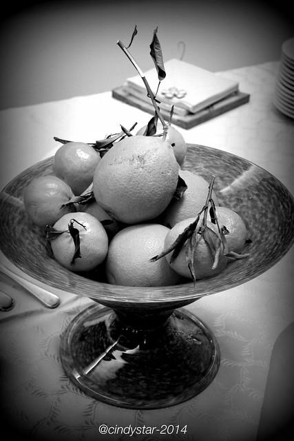 last citrus