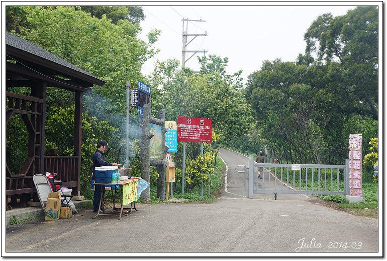 青青草原~