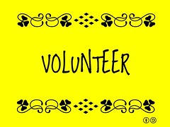 Buzzword Bingo: Volunteer