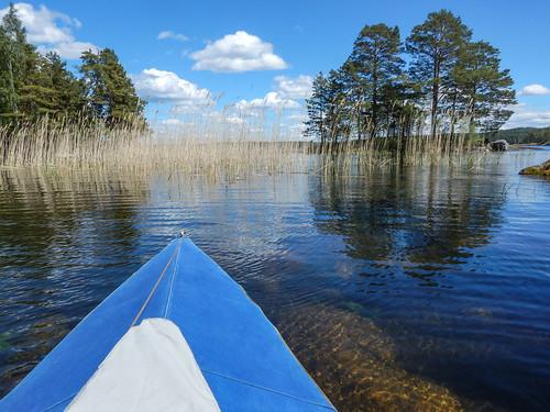lake reed landscape kayak sweden schweden canoe shore kayaking sverige canoeing scandinavia östergötland klepper foldingkayak boxholm sommen foldingboat östergötlandslän torpön asbyfjärden
