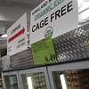 24 organic eggs at Costco for $6.49