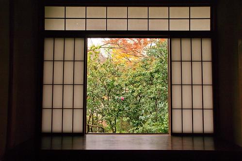 【写真】2012 紅葉 : 瑠璃光院/2020-06-07/IMGP7699