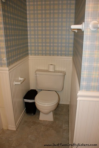 Guest Bath Toliet Before