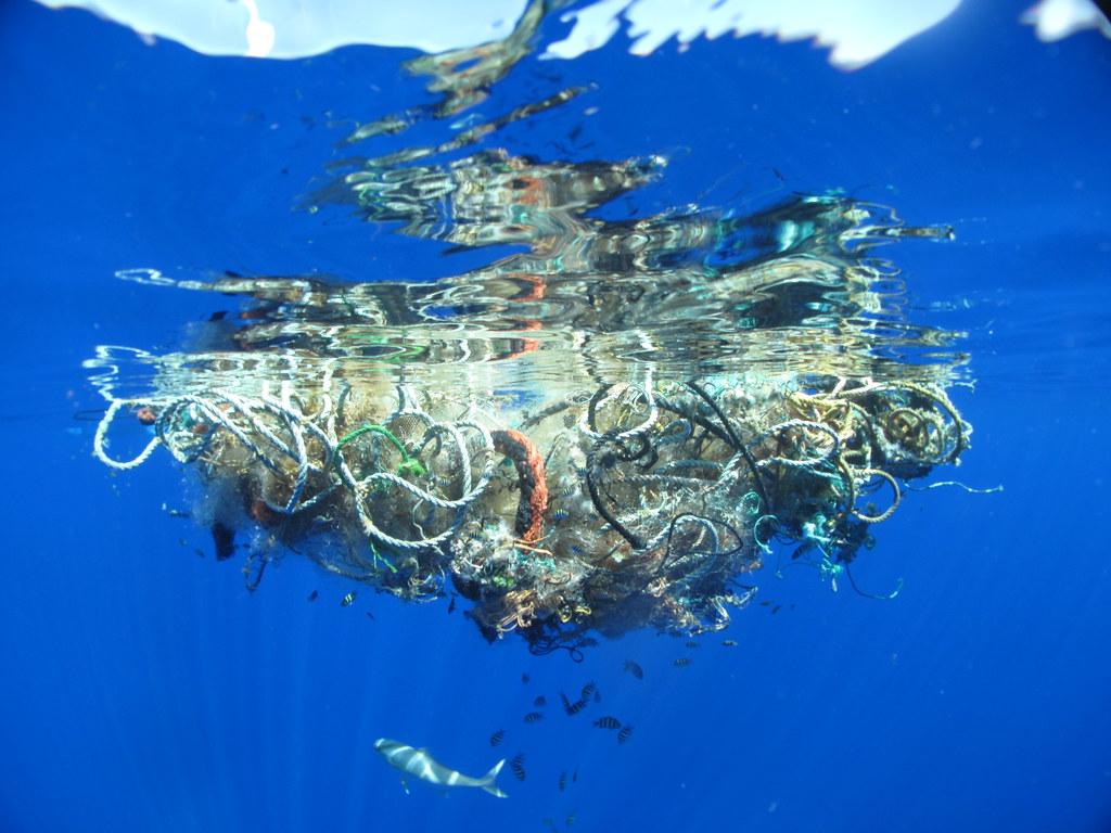 garbage-patch-19-hoshaw_lindsey