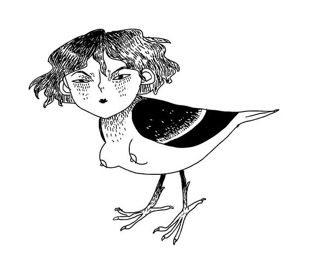 Aurora birdmode